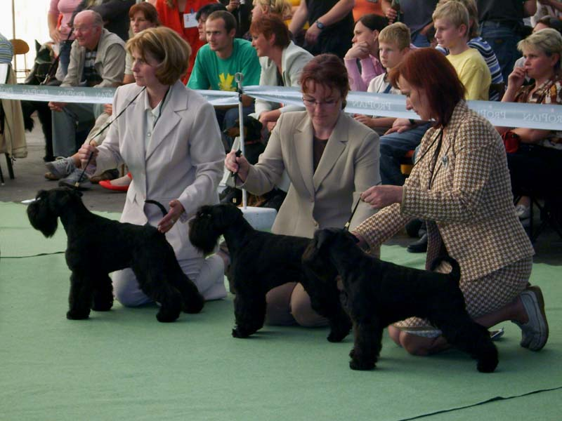 The Best Kennel ISPU 2007